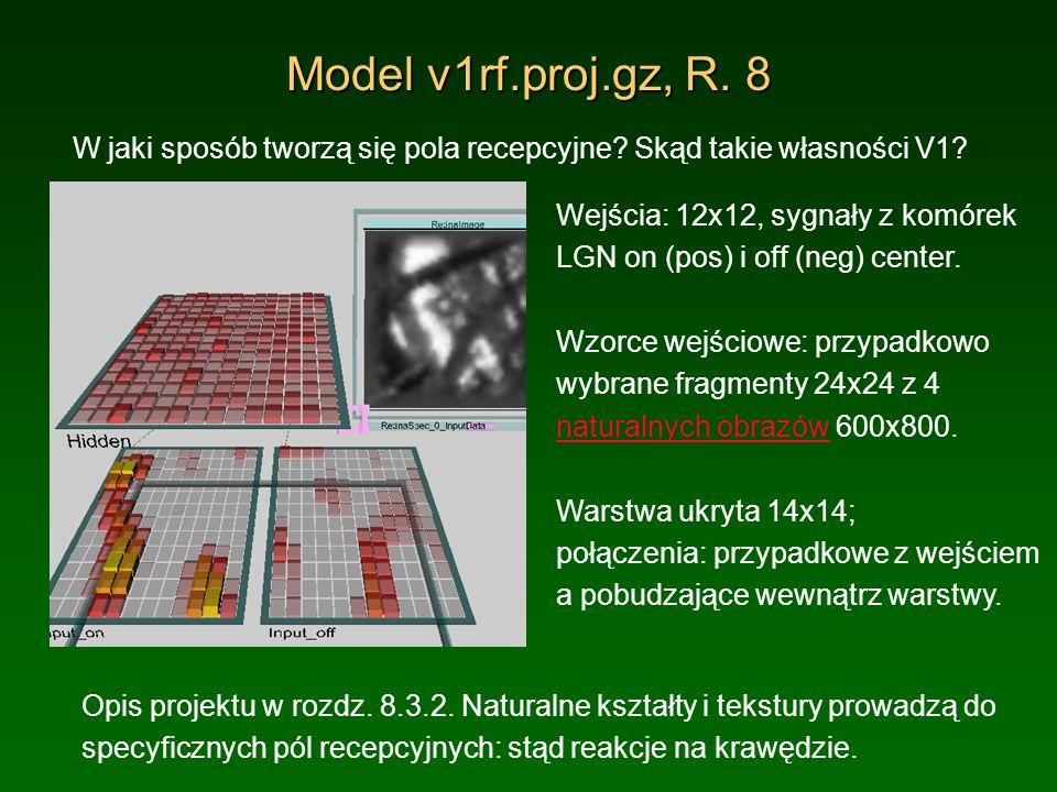 Model v1rf.proj.gz, R. 8 W jaki sposób tworzą się pola recepcyjne Skąd takie własności V1