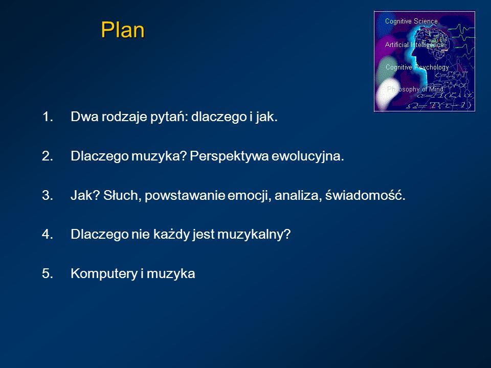 Plan Dwa rodzaje pytań: dlaczego i jak.
