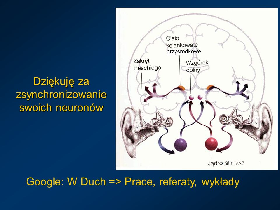 Dziękuję za zsynchronizowanie swoich neuronów