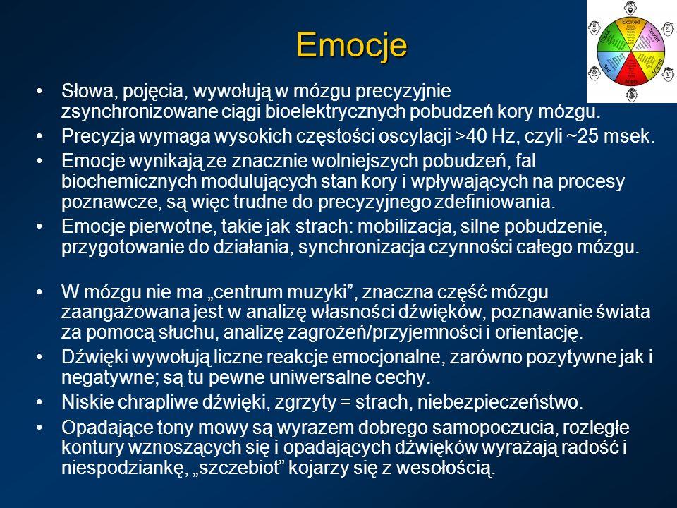 Emocje Słowa, pojęcia, wywołują w mózgu precyzyjnie zsynchronizowane ciągi bioelektrycznych pobudzeń kory mózgu.