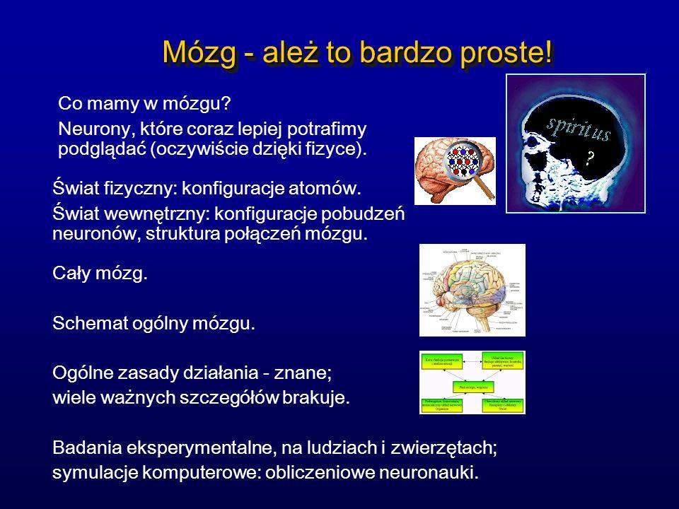 Mózg - ależ to bardzo proste!