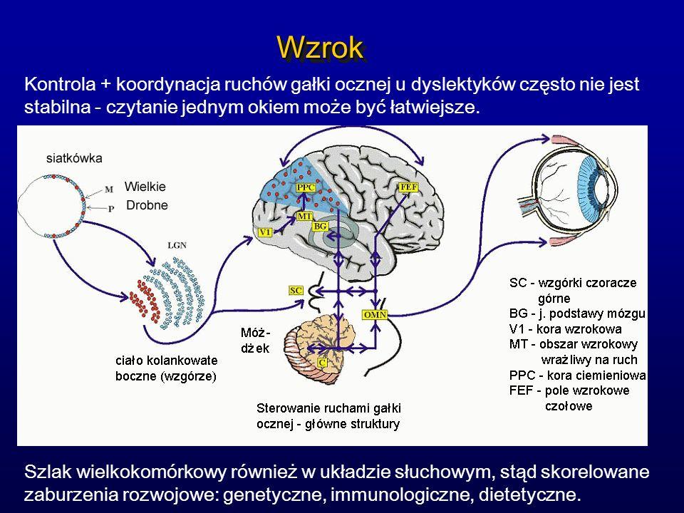 Wzrok Kontrola + koordynacja ruchów gałki ocznej u dyslektyków często nie jest stabilna - czytanie jednym okiem może być łatwiejsze.