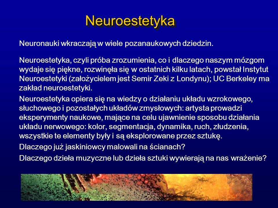 Neuroestetyka Neuronauki wkraczają w wiele pozanaukowych dziedzin.