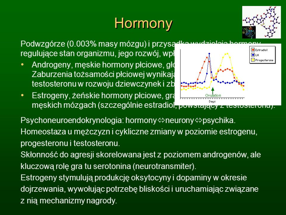 Hormony Podwzgórze (0.003% masy mózgu) i przysadka wydzielają hormony, regulujące stan organizmu, jego rozwój, wpływając na nastroje i emocje.
