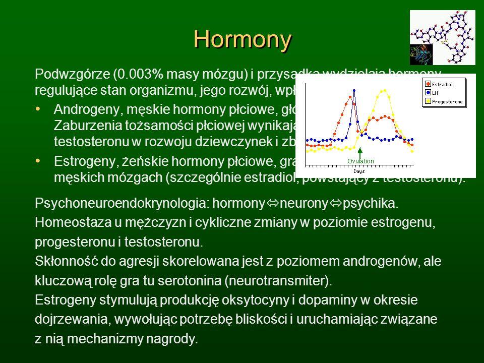 HormonyPodwzgórze (0.003% masy mózgu) i przysadka wydzielają hormony, regulujące stan organizmu, jego rozwój, wpływając na nastroje i emocje.