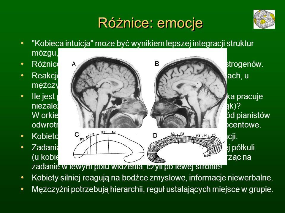 Różnice: emocje Kobieca intuicja może być wynikiem lepszej integracji struktur mózgu, kojarzenia informacji werbalnych i wizualnych.