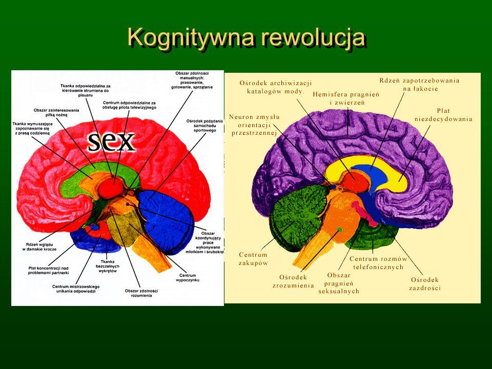 Kognitywna rewolucja Wiele dziedzin nauki przechodzi
