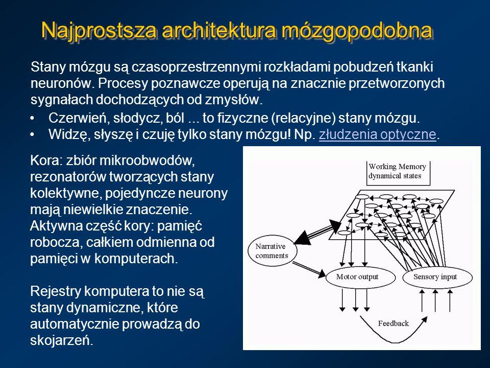 Najprostsza architektura mózgopodobna