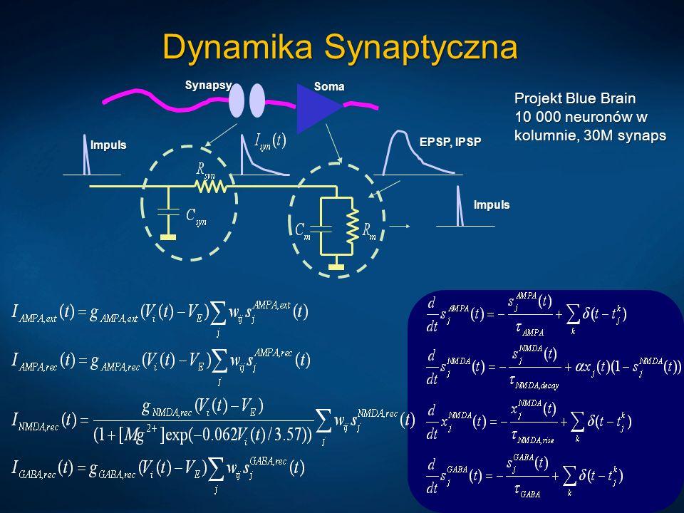 Dynamika Synaptyczna Projekt Blue Brain