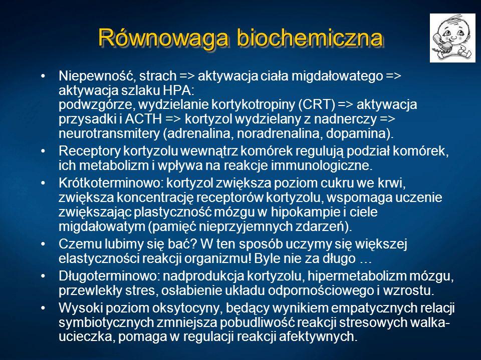Równowaga biochemiczna