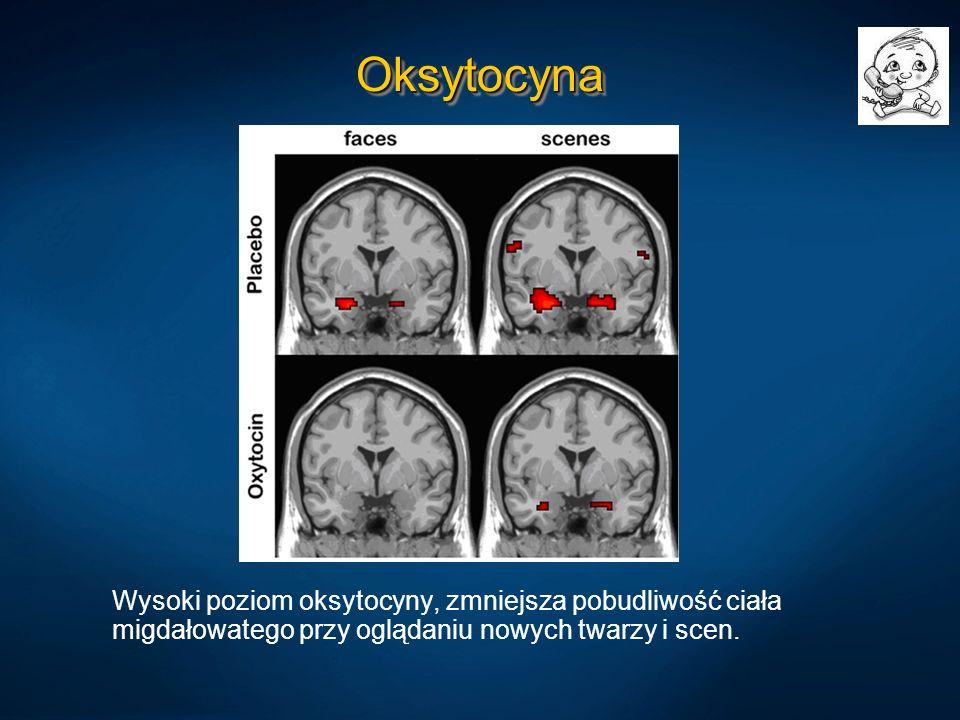 Oksytocyna Wysoki poziom oksytocyny, zmniejsza pobudliwość ciała migdałowatego przy oglądaniu nowych twarzy i scen.