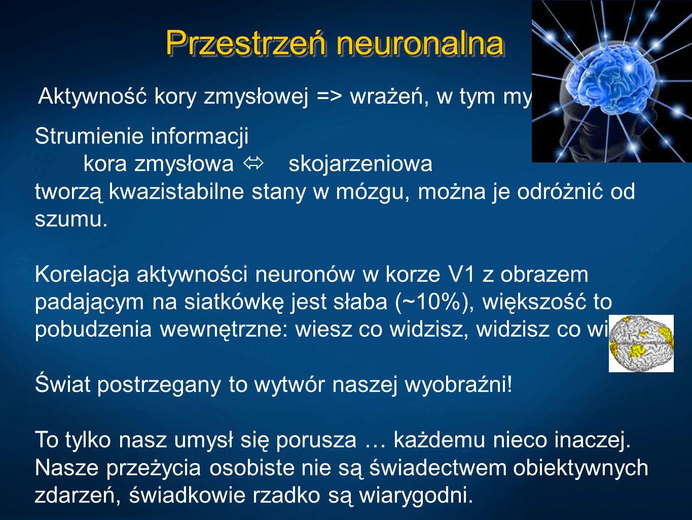 Przestrzeń neuronalna