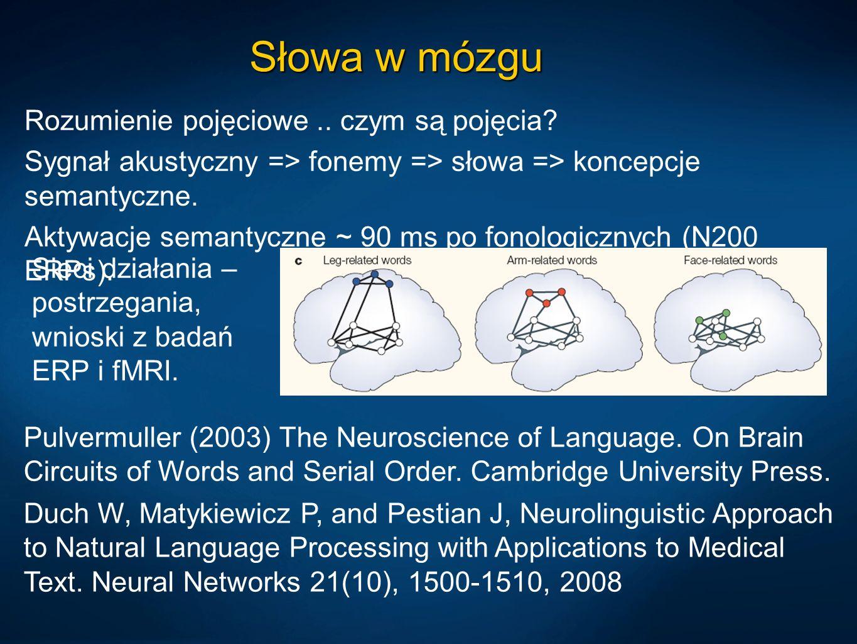 Słowa w mózgu Rozumienie pojęciowe .. czym są pojęcia