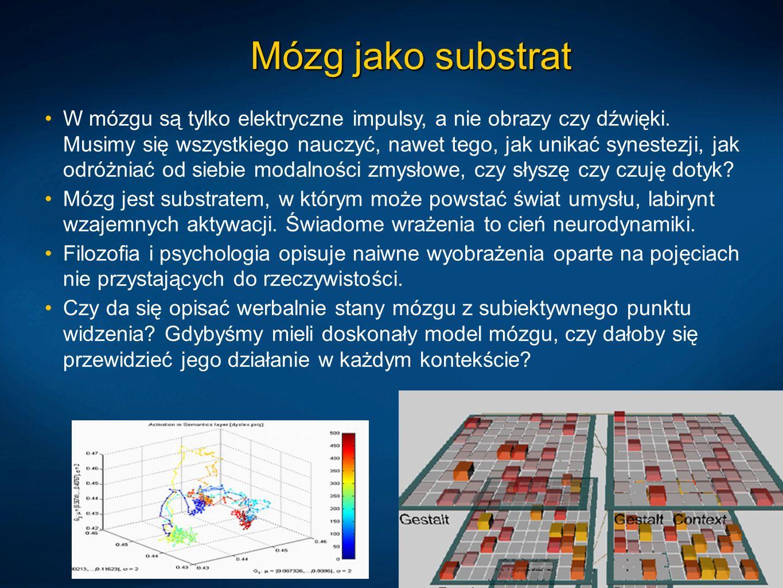 Mózg jako substrat