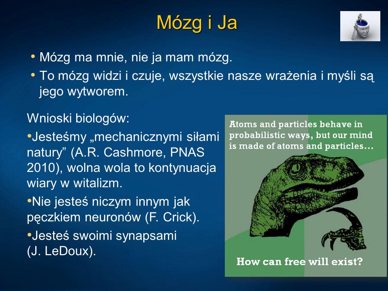 Mózg i Ja Mózg ma mnie, nie ja mam mózg.