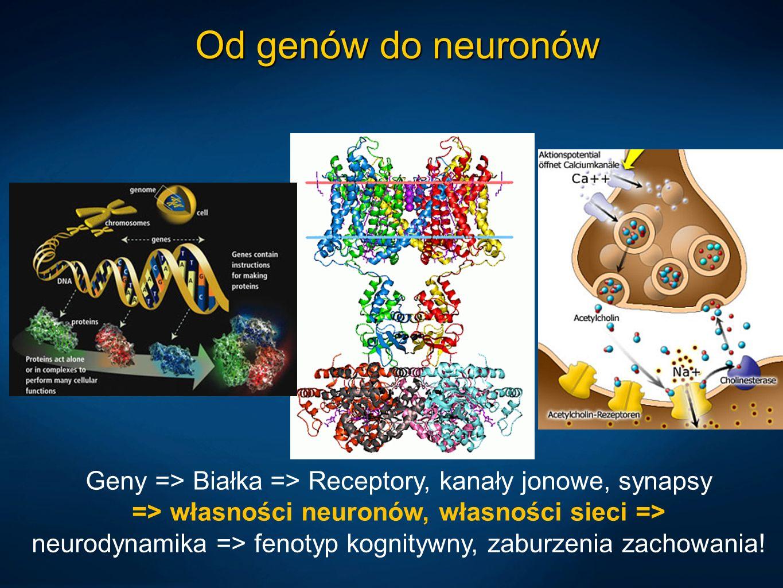Od genów do neuronów
