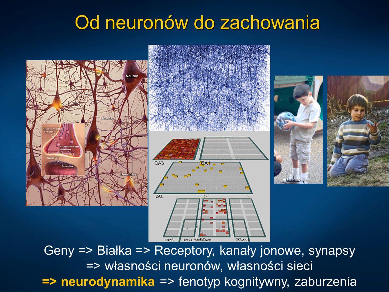 Od neuronów do zachowania