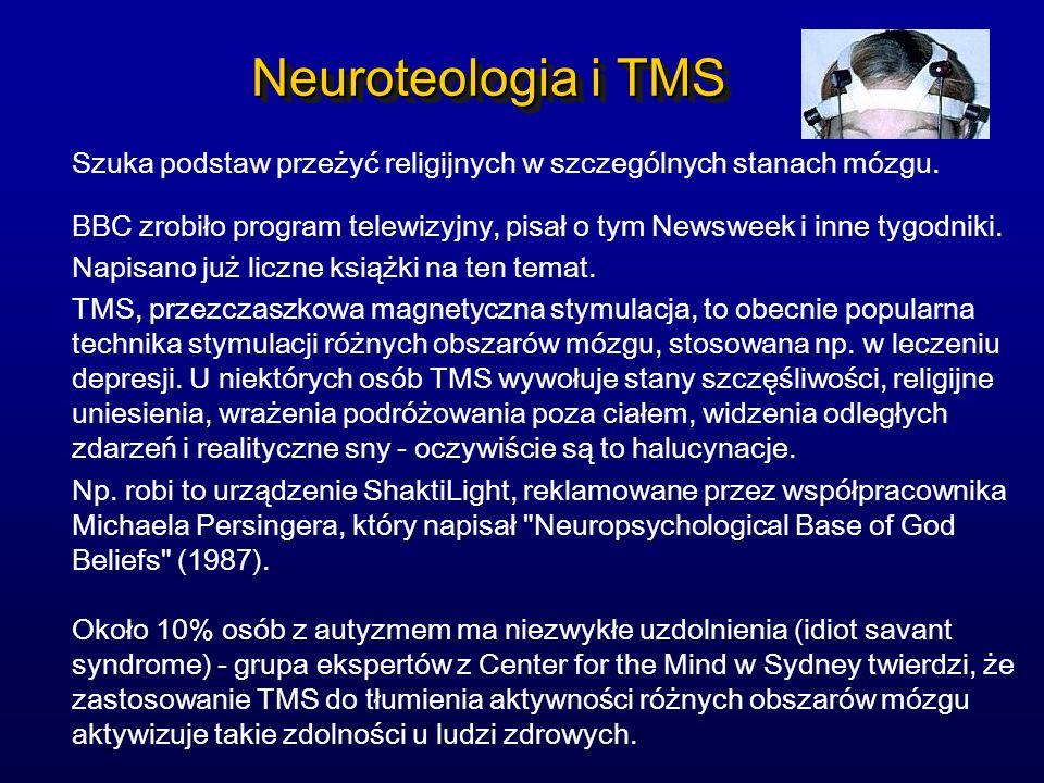 Neuroteologia i TMS Szuka podstaw przeżyć religijnych w szczególnych stanach mózgu.