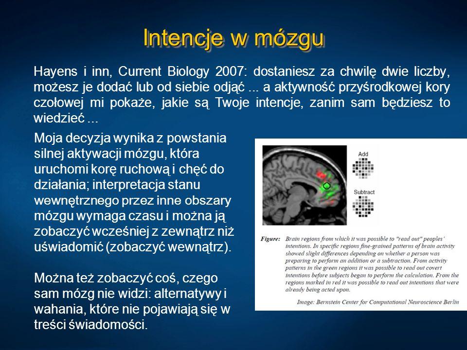 Intencje w mózgu