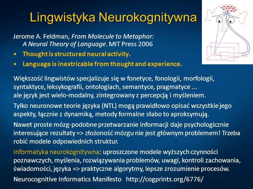Lingwistyka Neurokognitywna