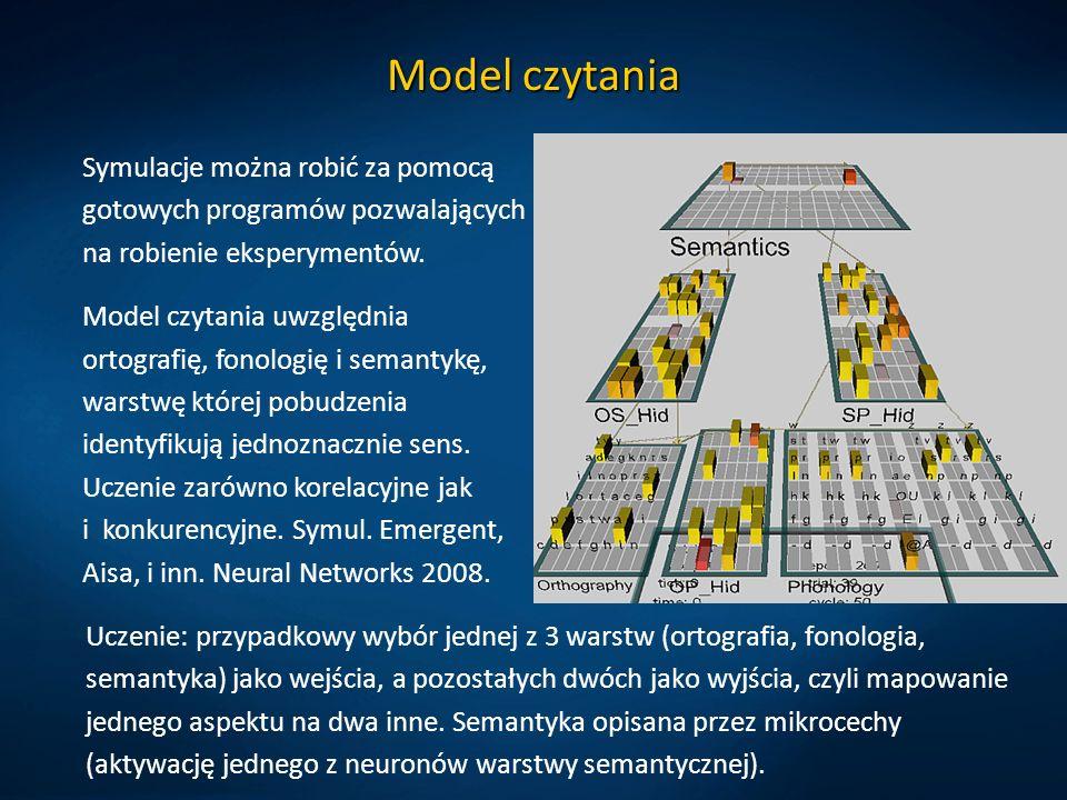 Model czytania Symulacje można robić za pomocą gotowych programów pozwalających na robienie eksperymentów.