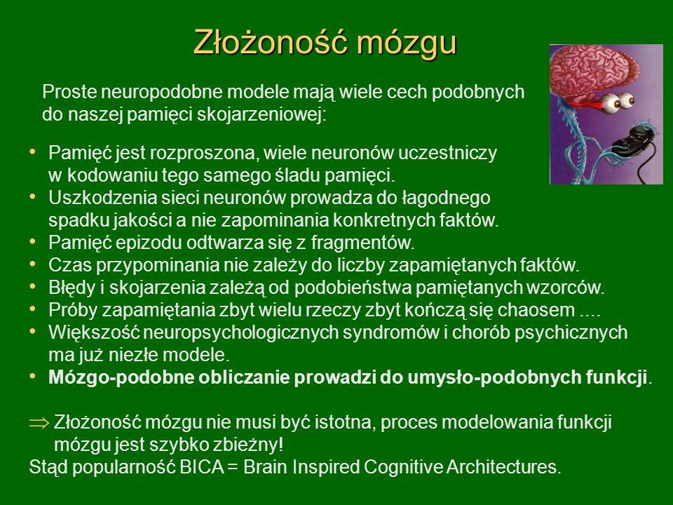Złożoność mózgu Proste neuropodobne modele mają wiele cech podobnych do naszej pamięci skojarzeniowej: