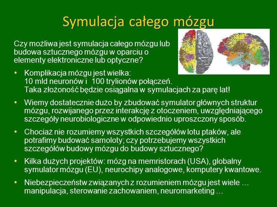 Symulacja całego mózgu