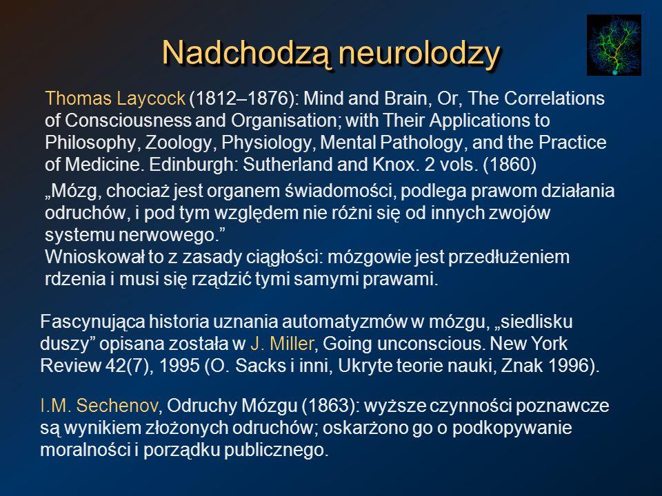 Nadchodzą neurolodzy