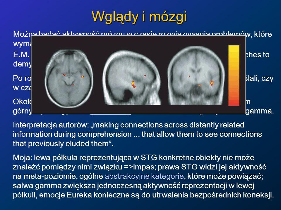 Wglądy i mózgi