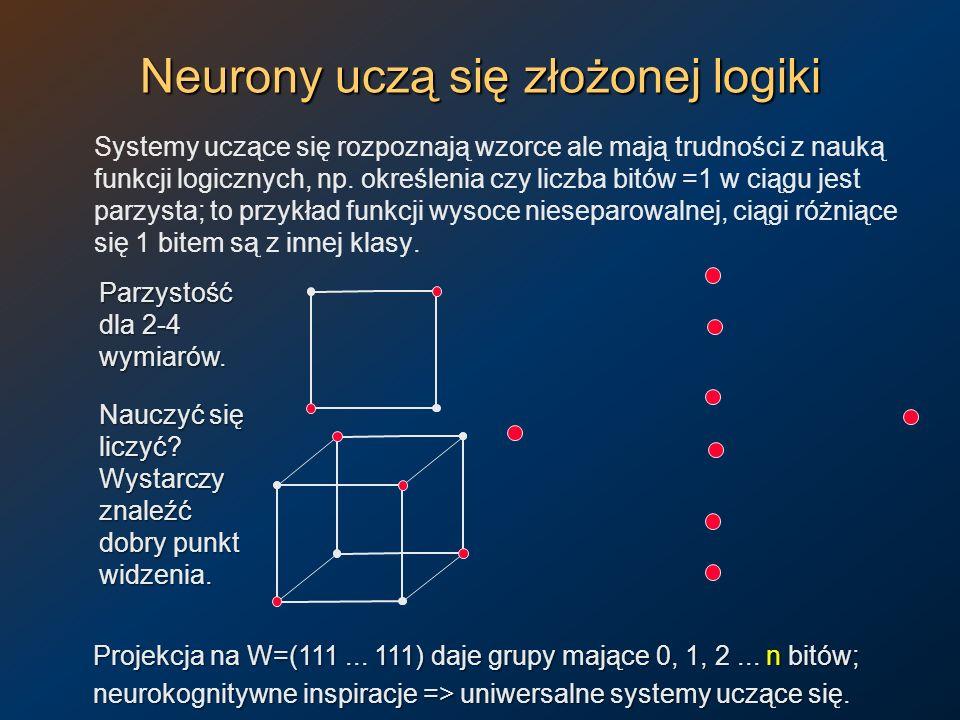 Neurony uczą się złożonej logiki