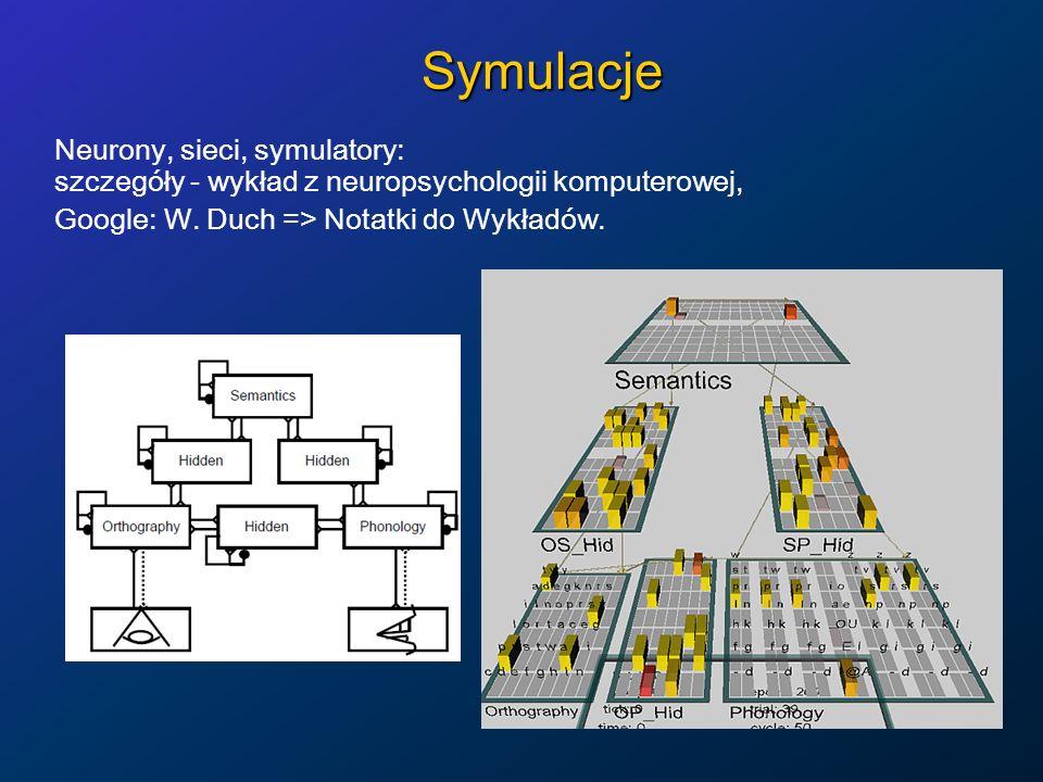 Symulacje Neurony, sieci, symulatory: szczegóły - wykład z neuropsychologii komputerowej, Google: W. Duch => Notatki do Wykładów.