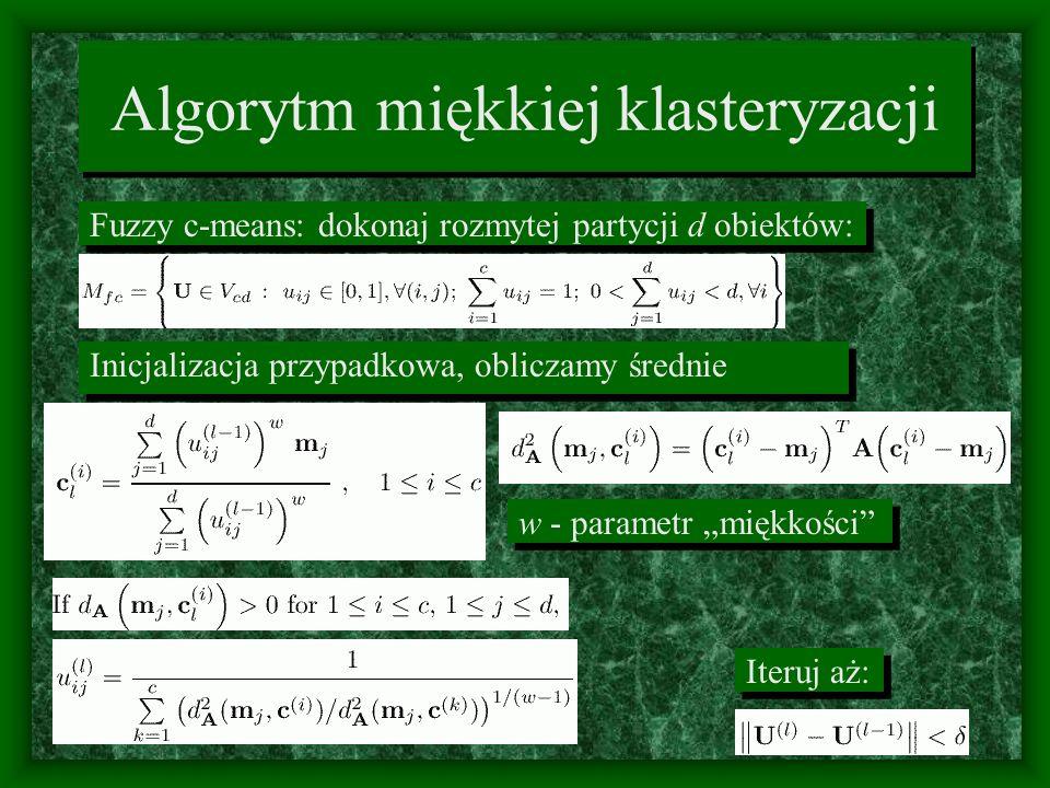 Algorytm miękkiej klasteryzacji