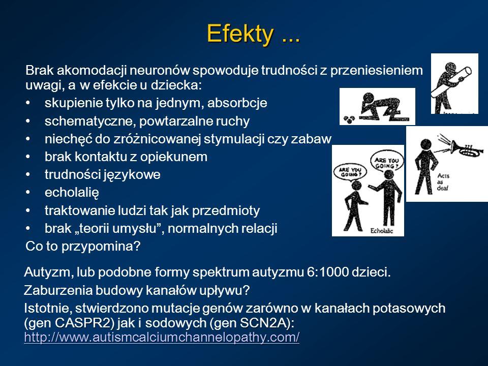 Efekty ... Brak akomodacji neuronów spowoduje trudności z przeniesieniem uwagi, a w efekcie u dziecka: