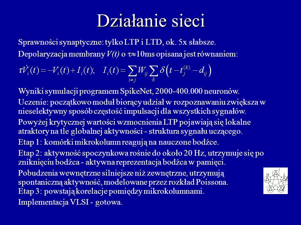 Działanie sieci Sprawności synaptyczne: tylko LTP i LTD, ok. 5x słabsze. Depolaryzacja membrany V(t) o t10ms opisana jest równaniem: