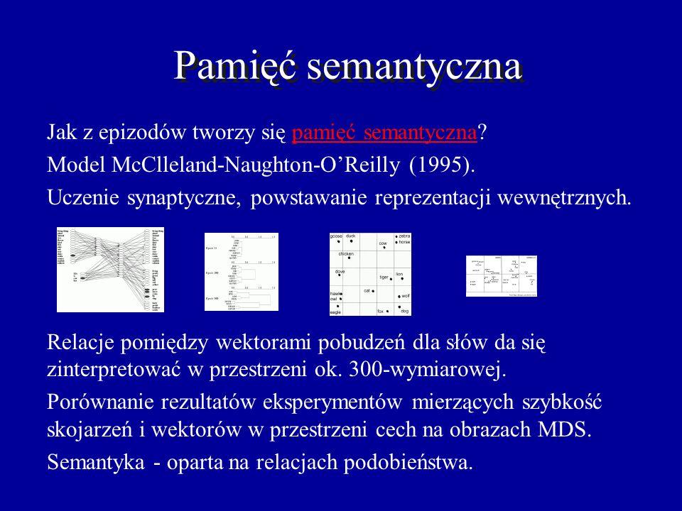 Pamięć semantyczna Jak z epizodów tworzy się pamięć semantyczna
