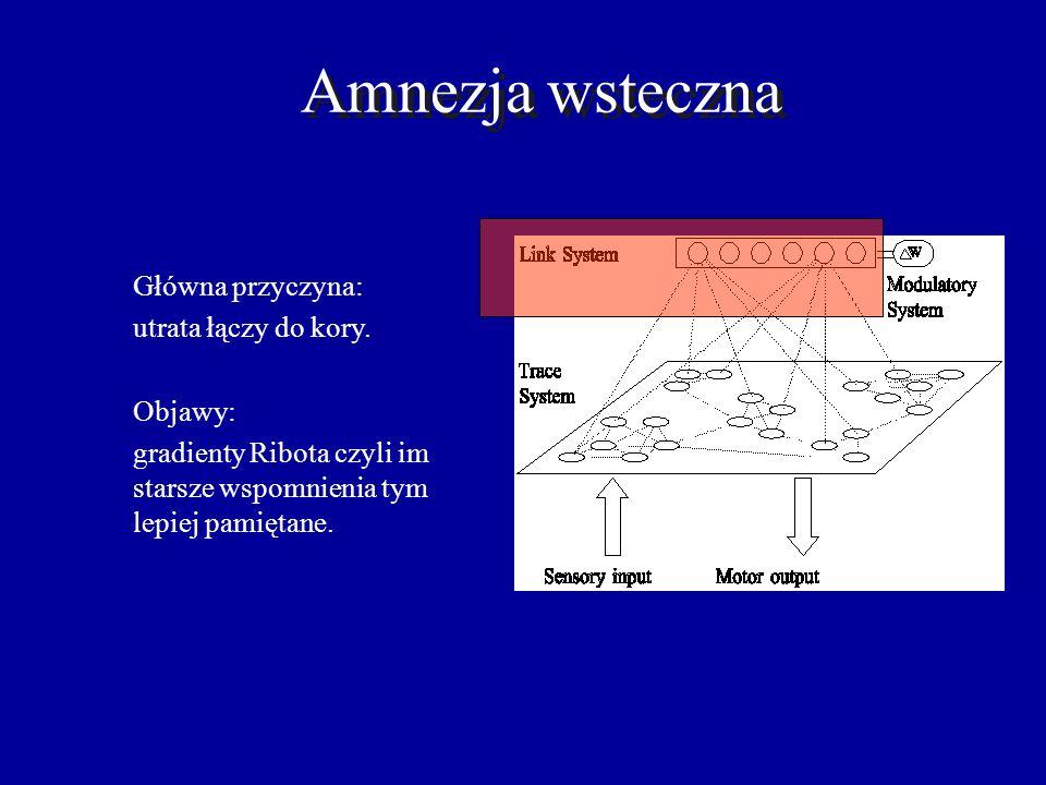 Amnezja wsteczna Główna przyczyna: utrata łączy do kory. Objawy:
