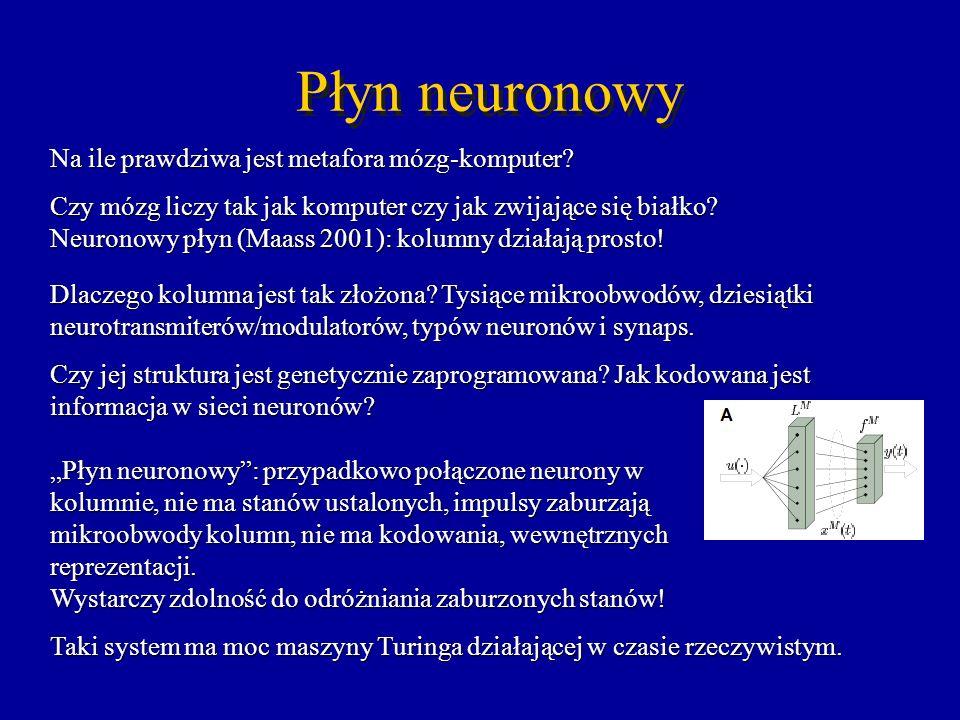Płyn neuronowy Na ile prawdziwa jest metafora mózg-komputer