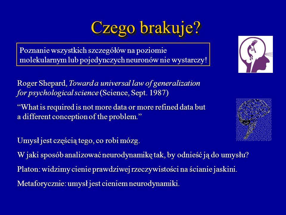 Czego brakuje Poznanie wszystkich szczegółów na poziomie molekularnym lub pojedynczych neuronów nie wystarczy!