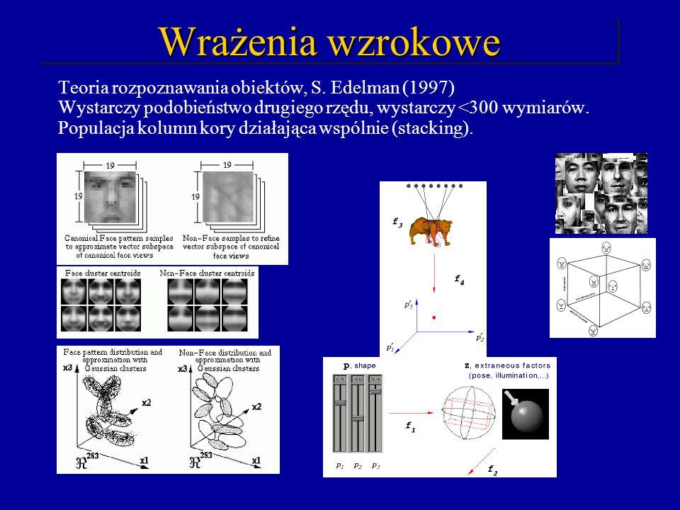 Wrażenia wzrokowe Teoria rozpoznawania obiektów, S. Edelman (1997)