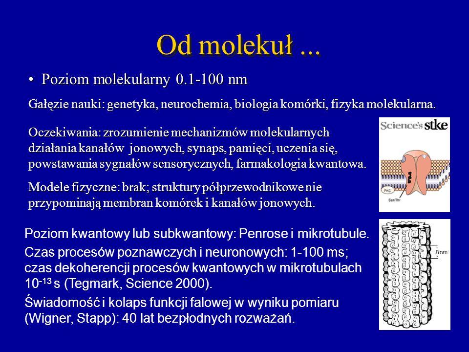 Od molekuł ... Poziom molekularny 0.1-100 nm