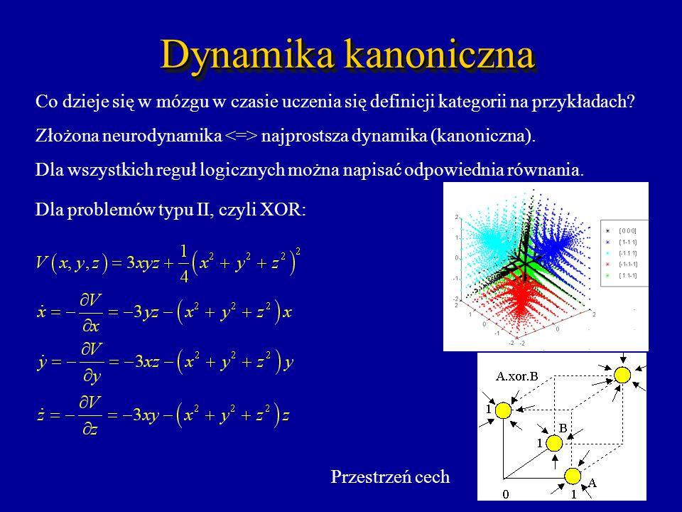 Dynamika kanoniczna Co dzieje się w mózgu w czasie uczenia się definicji kategorii na przykładach