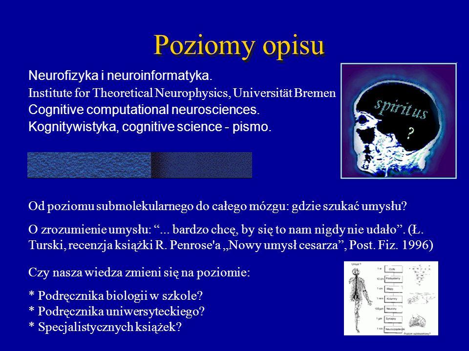 Poziomy opisu Neurofizyka i neuroinformatyka.
