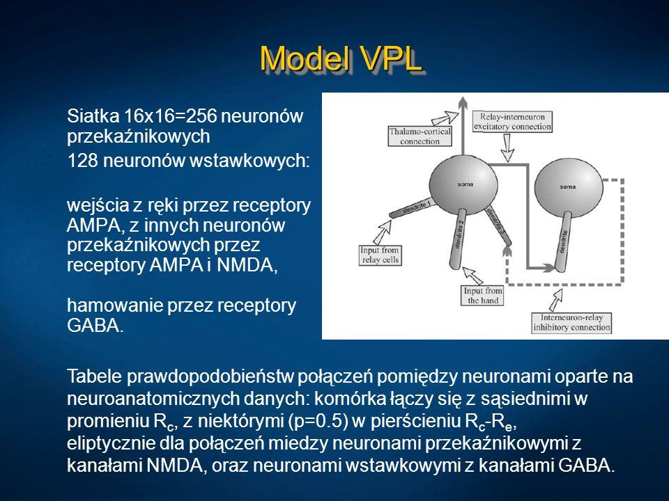 Model VPL Siatka 16x16=256 neuronów przekaźnikowych