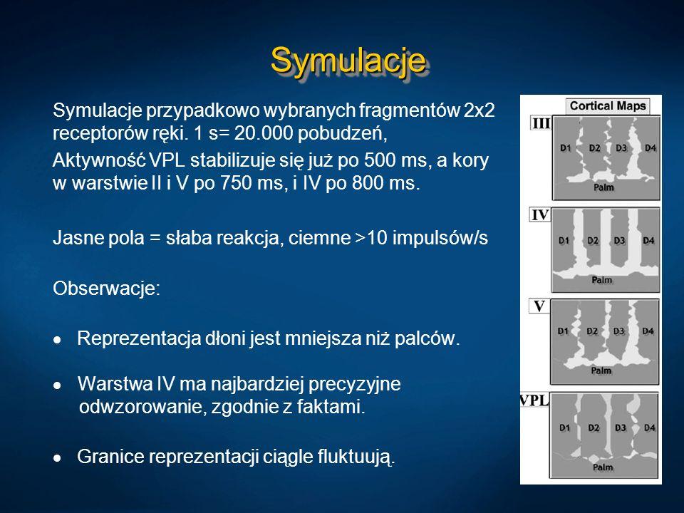 Symulacje Symulacje przypadkowo wybranych fragmentów 2x2 receptorów ręki. 1 s= 20.000 pobudzeń,