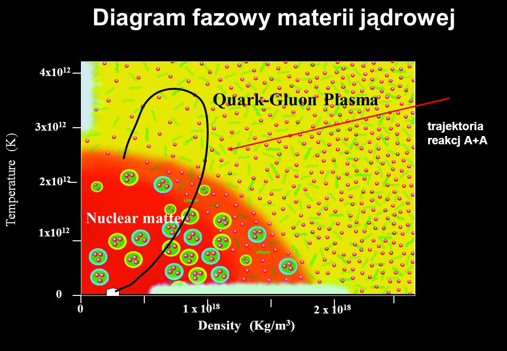 Diagram fazowy materii jądrowej