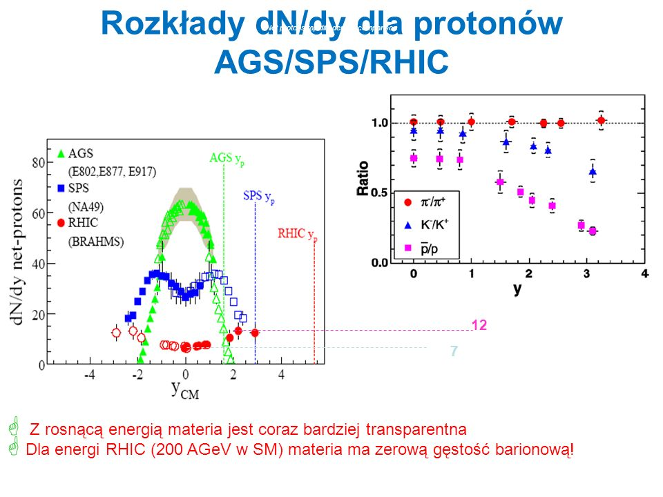 Rozkłady dN/dy dla protonów AGS/SPS/RHIC