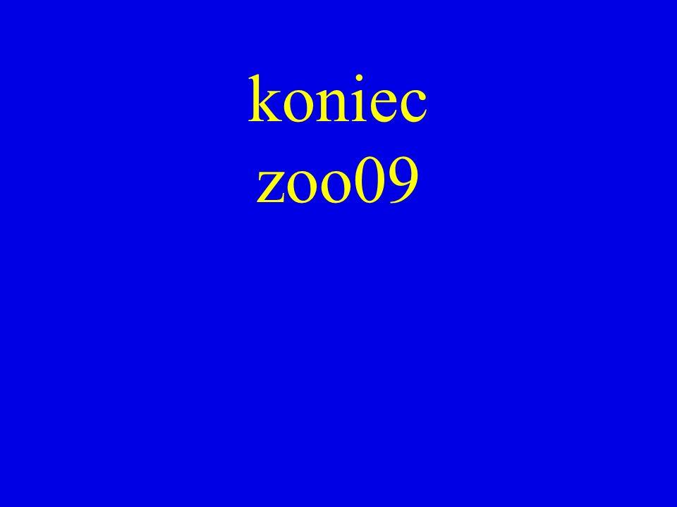 koniec zoo09