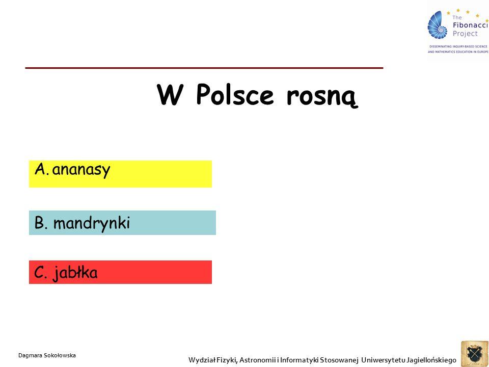 W Polsce rosną ananasy B. mandrynki C. jabłka