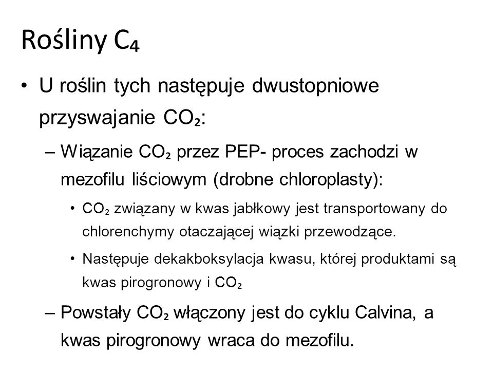 Rośliny C₄ U roślin tych następuje dwustopniowe przyswajanie CO₂: