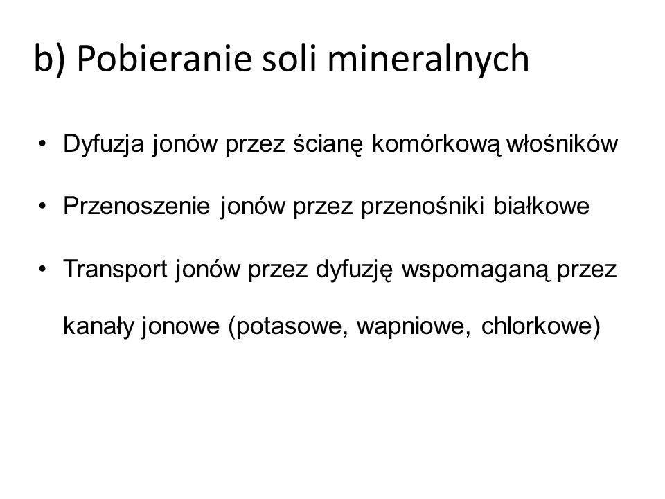 b) Pobieranie soli mineralnych